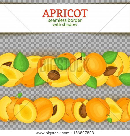 Ripe apricot Horizontal seamless borders . Vector illustration card. Wide and narrow endless strip with Juisy apricots fruits with shadow transporent whole and slice, leaf. Infinite fruit border