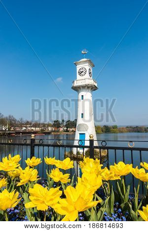 Yellow Tulips blooming in front of the Robert Scott Memorial Lighthouse at Roath Park Lake Cardiff Wales UK.