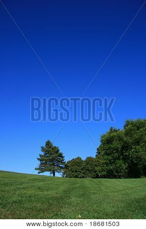 Country Landscape on a clear Day at Summer Time