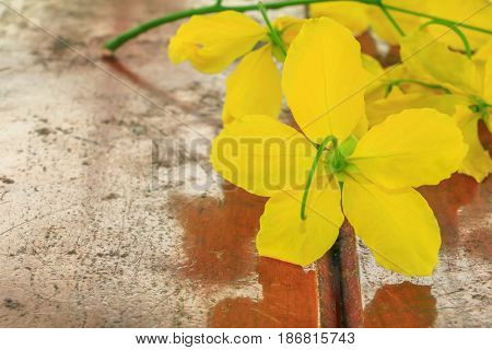 Cassia fistula yellow flower. Golden Shower Tree with branch on wooden floor beautiful background