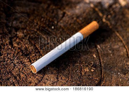 cigarette on wooden background, сигарета с фильтром