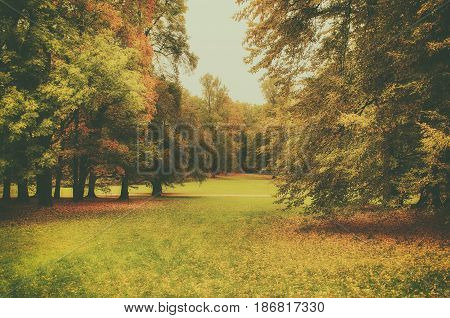 Autumn park with orange trees and meadow , natural seasonal hipster background