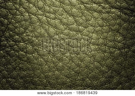 Green leather texture, leather background for design. Pattern of leather that occurs natural.
