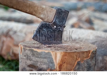 Ax Pinned In The Stump, Cuts Of Trees, Firewood, Preparing For Cold Days, Chopping Wood