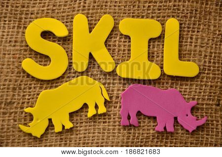 word skil on a  abstract colorful background