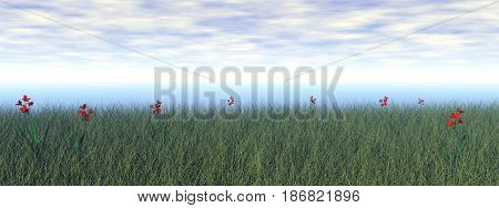 Grassland with beautiful red flowers by cloudy day - 3D render