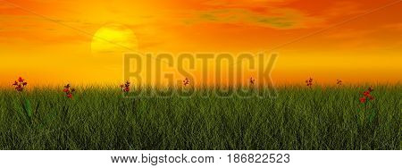 Grassland with beautiful red flowers by sunset - 3D render