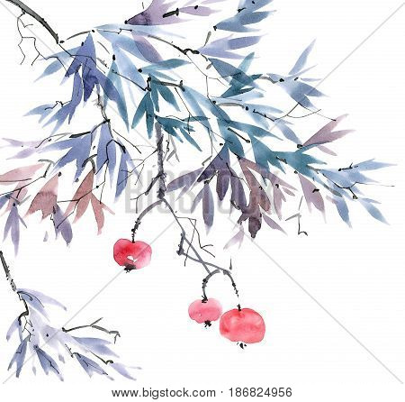 Watercolor and ink illustration of tree branch with fruits. Sumi-e u-sin painting.