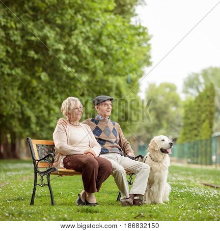 Elderly couple with a dog sitting on a bench in a park