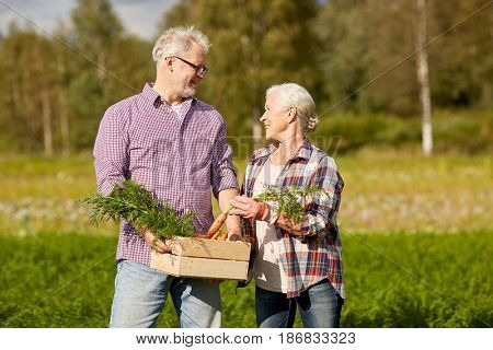 farming, gardening, agriculture, harvesting and people concept - senior couple with box of carrots at farm