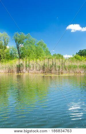 Beautiful landscape in coutryside, lake in nature park Lonjsko polje, Croatia