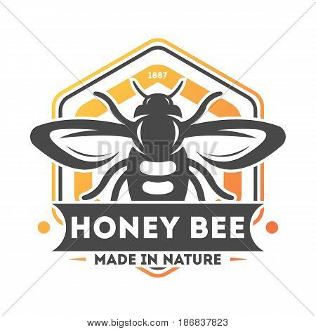 Honey bee vintage label isolated vector illustration. Traditional beekeeping icon, organic honey product logo, natural sweet food badge.