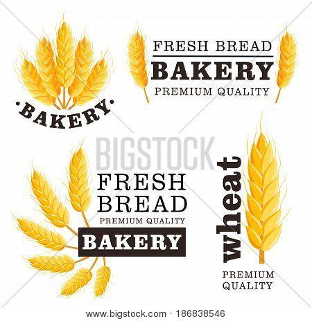 Fresh bread isolated logo set. Bakery shop design element, organic local farming, healthy food branding, natural agricultural concept. Wheat bread ear symbol, grain culture vector illustration.