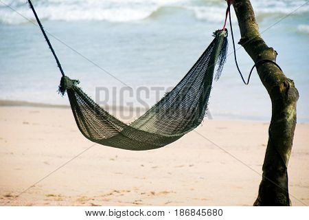 Black Hanging cradle on tree in the beach