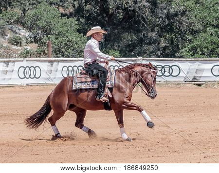 Participants In Equestrian Competitions Perform On A Horse Farm In The Kibutz Alonim Near Kiryat Tiv