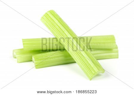 Celery green fresh isolated on white background