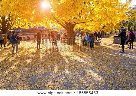 Seoul, Korea - November 2, 2014: Autumn Leaves At Gyeongbokgung Palace, November 2, 2014 In Seoul, S