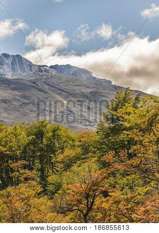 Patagonia Mountain Landscape Scene, Aisen Chile