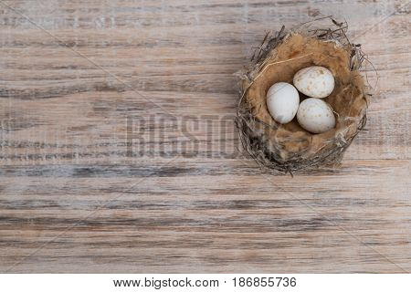 Small bird nest with speckled eggs on timber background