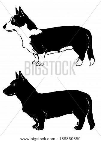 Corgi dog set outline and silhouette vector