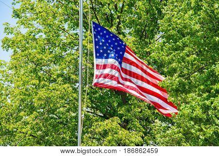American flag flying half mast in summer green tree