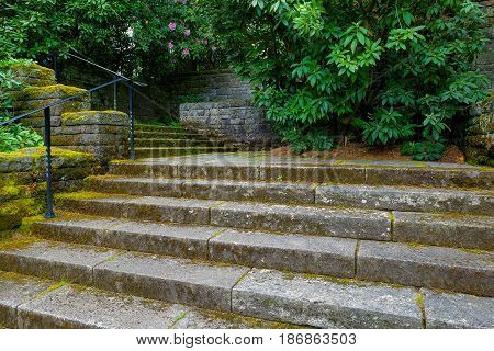 Old stone stair steps in Renaissance garden with plants and shrubs during spring season