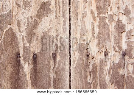 Texture old dirty wood background surfer wooden