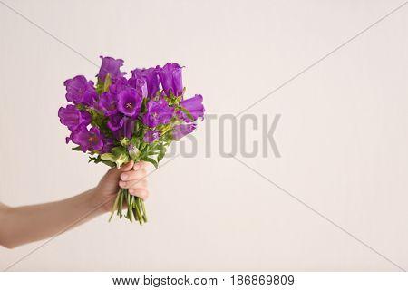 Beautiful bouquet of purple bellflowers in female hand on light background