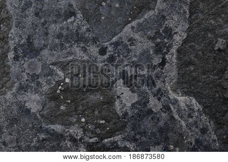 Abstract Textured Concrete Background. Grey Texture Close Up Blank For Design. Copy Space.