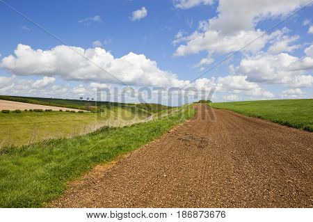 Green Valley And Chalky Soil Strip