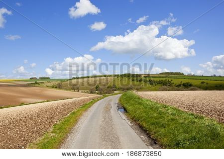 Country Road And Chalky Soil