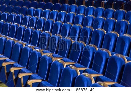 Rows of blue seats in the auditorium. Theater, cinema or circus.