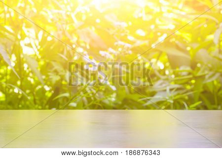 wooden table place of free space for your decoration on green blurry natural background in sun light