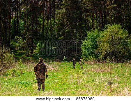 Young guys at the entrance to the mysterious and marvelous forest with tall pine trees very beautiful wild nature green grass yellow flowers brightly lit by the sun glade