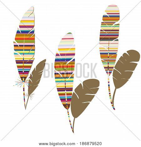 Three abstract feathers with colorful stripes and brown shadow