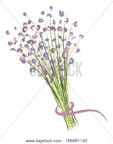 Bouquet of small purple wildflowers tied with a ribbon. Vector illustration