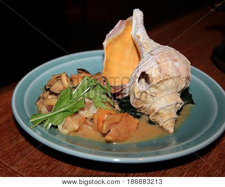 Seafood dish with conch shell in a plate, side view A dish of various seafood favorites and decorated with a conch shell