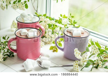 Hot Cocoa With Marshmallows In Pink Cups