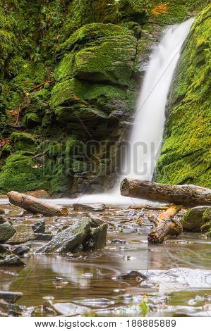 Waterfall in British ancient woodland. Stream flowing through Stephen's Vale nature reserve in Somerset UK with fallen logs