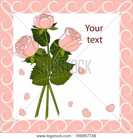 Greeting card three pink roses with leaves and petals in a pink frame with curls, vector illustration