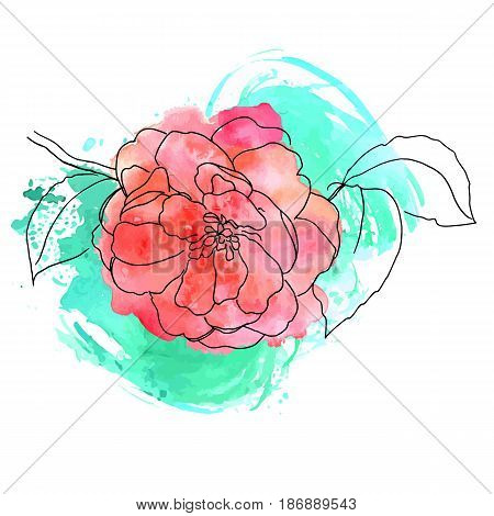 Vector and watercolor drawing of tender pink camellia flower in bloom, on branch with leaves, isolated, on teal brush stroke texture, decorative element for greeting card or wedding invitation