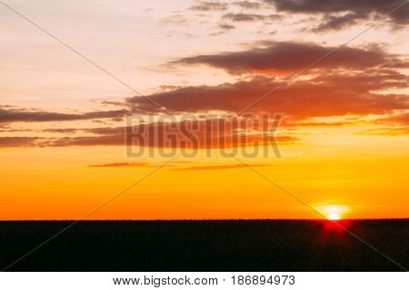Sunset, Sunrise Over Rural Wheat Field. Bright Dramatic Sky And Dark Ground. Countryside Landscape Under Scenic Summer Dramatic Sky In Sunset Dawn Sunrise. Skyline. Warm Colors