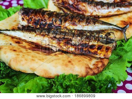 Fried fish with herbs served on bread