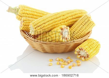 Corn cob close up in a wicker basket on a white background. Isolate