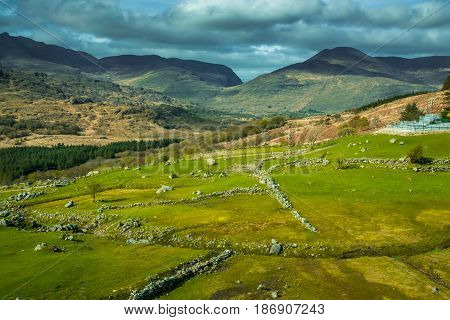 Pastures and meadows along the Ring of Kerry road,  Killarney National Park, Ireland