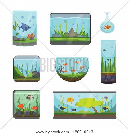 Transparent aquarium isolated on white background underwater fish tank habitat house. Tropical sea aquatic cartoon freshwater glass fishbowl aquarian bowl vector illustration