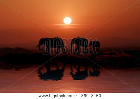Silhouette of African Elephants at Sunset