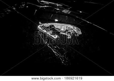 STUTTGART GERMANY - MARCH 03 2017: Hood ornamental car of Jaguar (Jaguar in the jump). Black and white. Europe's greatest classic car exhibition