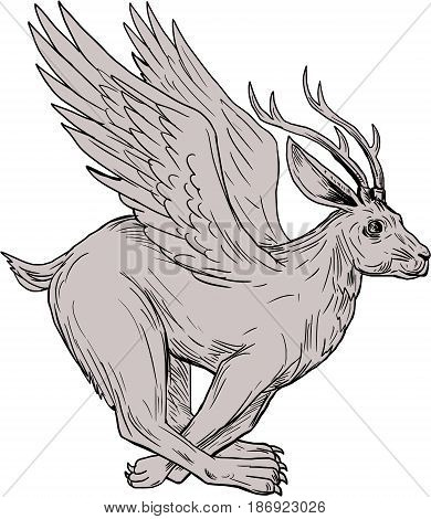 Drawing sketch style illustration of a Wolpertinger in Bavarian folklore a mythical hare with antlers fangs and wings running viewed from the side set on isolated white background.