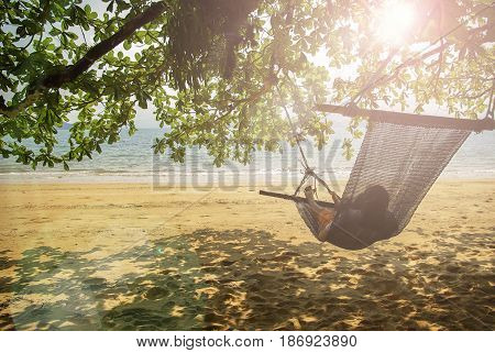 beach cradle under the tree by the beach